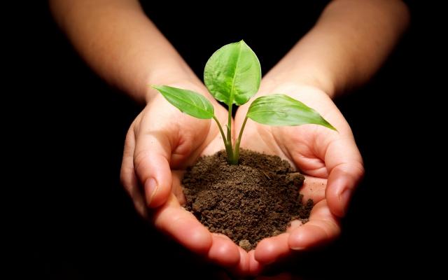 Duurzaamheid op het werk: wat en hoe?