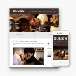 Pro pakket website voor Chocolatier Dumon uit Torhout