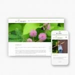 Lite pakket website voor Sensum voor amper 399 euro