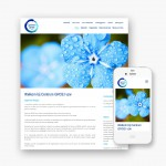 Plus pakket website voor Vzw Centrum Groei uit Oudenburg